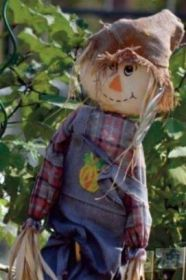 Scarecrow cover image web